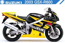 2003 Suzuki GSXR600 accesorios