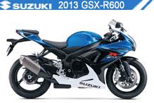 2013 Suzuki GSXR600 accesorios