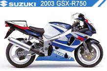 2003 Suzuki GSXR750 accesorios