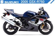 2005 Suzuki GSXR750 accesorios