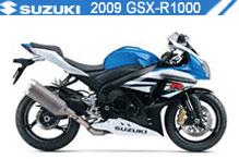 2009 Suzuki GSXR1000 accesorios