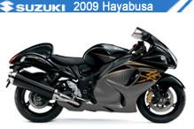 2009 Suzuki Hayabusa accesorios