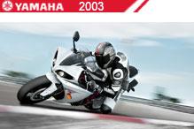 2003 Yamaha accesorios