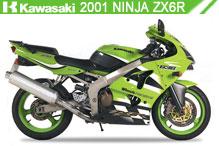 2001 Kawasaki Ninja ZX-6R accesorios