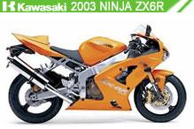 2003 Kawasaki Ninja ZX-6R accesorios