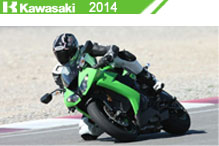 2014 Kawasaki accesorios