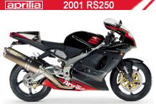 2001 Aprilia RS250 accesorios