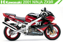 2001 kawasaki Ninja ZX-9R accesorios