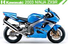 2003 kawasaki Ninja ZX-9R accesorios