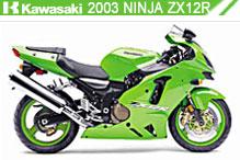 2003 kawasaki Ninja ZX-12R accesorios