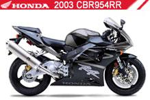 2003 Honda CBR954RR accesorios