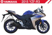 2015 Yamaha YZF-R3 accesorios