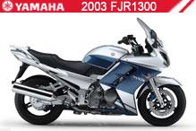 2003 Yamaha FJR1300 accesorios