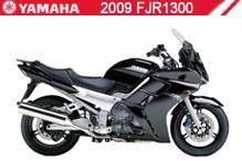 2009 Yamaha FJR1300 accesorios