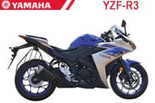 YZF R3 Carenado