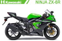Ninja ZX6R Carenado