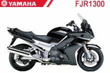 FJR1300 Carenado