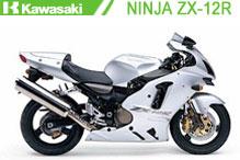 Ninja ZX12R Carenado