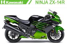 Ninja ZX14R (ZZR 1400) Carenado